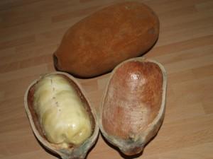 Le cupuaçu biologique superfruit antioxydant